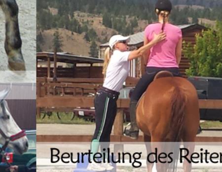 Pferd-Reiter-Analyse mit Sitzschulung