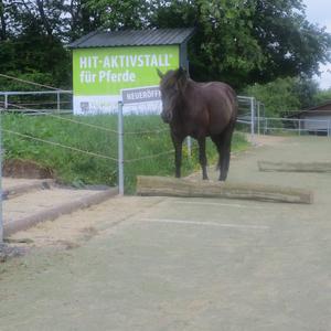 Active-Trail zur Kraftfutterstation