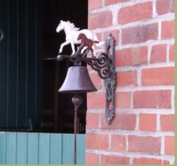 eintrag pferde alles f r pferd und reiter. Black Bedroom Furniture Sets. Home Design Ideas
