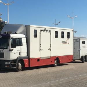 2 Pferdetransporter