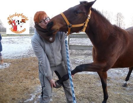 Ganzheitliche Pferdebeurteilung und Muskelprobleme bei Pferden