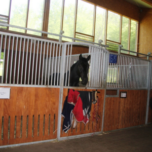 Unsere Pferdeboxen