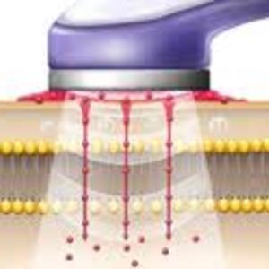 Pferde Ultraschall Therapie