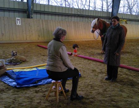 Pferd & Reiter gut in Form