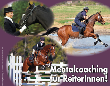 Reitmentalcoaching in Uetze am 11.11.2017