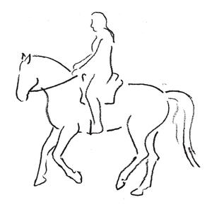 Pferd als Freund
