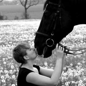 Pferdetherapie Kleber