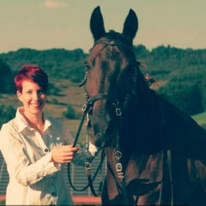 Ganzheitliches Training für Pferd und Reiter