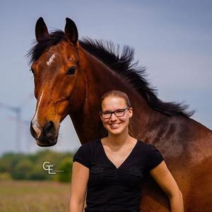 Pferdefotografie-Jever