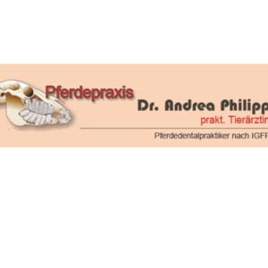 Pferdepraxis Dr. Andrea Philipp