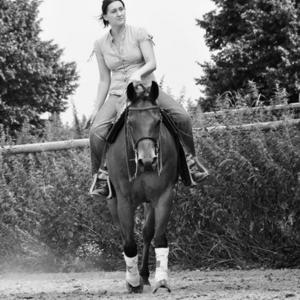 Motus Equi Physiotherapie für Sport- und Freizeitpferde