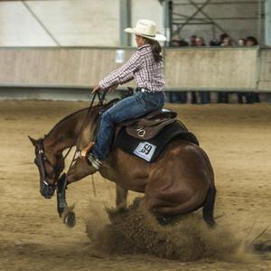 Mareike Köhler Western Horses