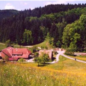 Engelhof-Reiten