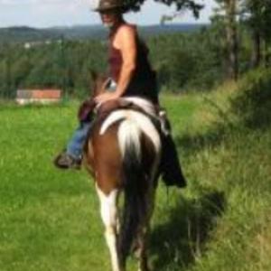 Reitstall Wanderreitbetrieb Stormy Horse Ranch