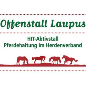Offenstall Laupus