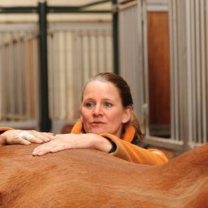 Tierheilpraxis für Pferd & Hund - Osteopathie, Akupunktur, u.a.
