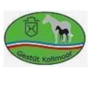 Gestüt Kollmoor