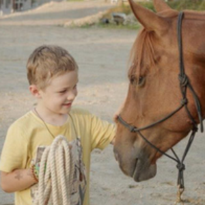 MM Horsemanship