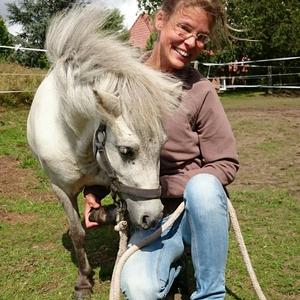 Osteopathie für Pferde seit `01