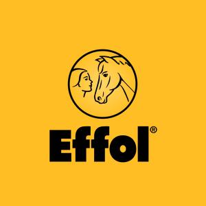 Schweizer-Effax GmbH