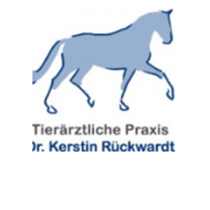 Pferdepraxis Rückwardt