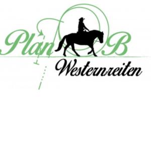 Mobiles Westerntraining, Bodenarbeit