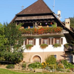 Ferien Reiterhof Schwarz