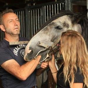Horsedentist Torsten Bockler