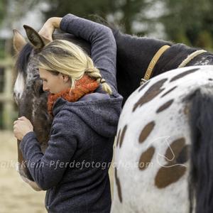 Pferdeosteopathie fühlen und verstehen