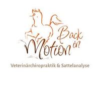 Back in Motion