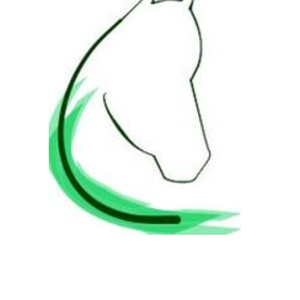 Praxis für Pferde Dr. Till Sundermann