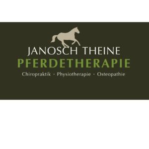 Janosch Theine Pferdetherapie