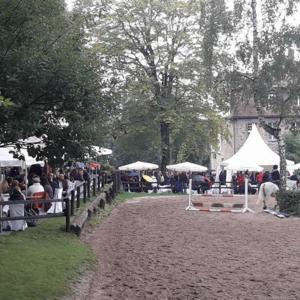 Pferdehof Sommer
